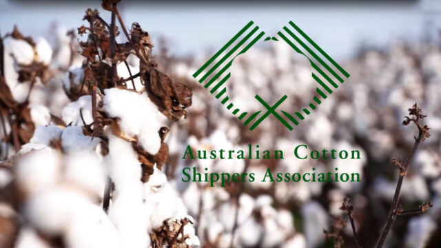 Australian Cotton Shippers